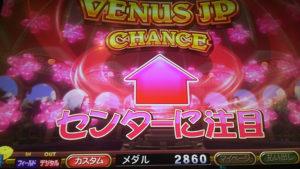 venus206